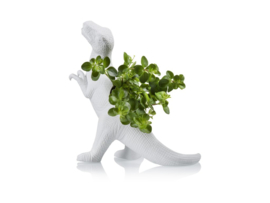 Dinosaurus plantenpot Rex