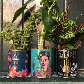 Frida Kahlo blik  2 maten/ 6 kleuren