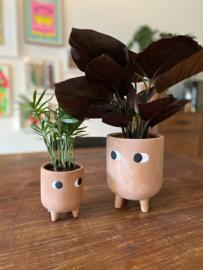 Planter terracotta 'Leggy'