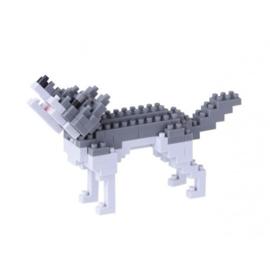 Gray Wolf  NBC-144