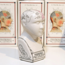 Deco figuur Phrenology head crackle