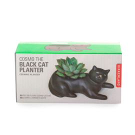 Kikkerland black cat planter