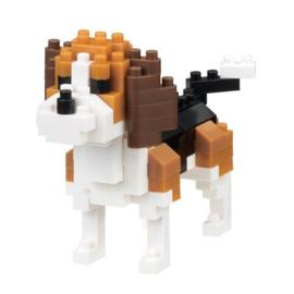 Beagle NBC-253