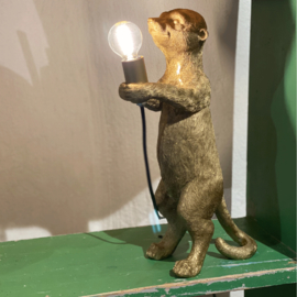 House vitamin Stokstaartje lamp