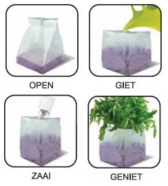 Bag to nature: Magische Munt