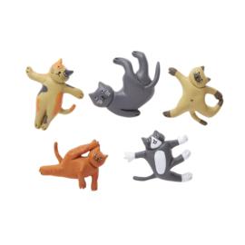 Kikkerland  magneten katten yoga