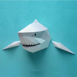 Assembli Papieren Haai