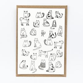 Studio Flash 'Little Cats'