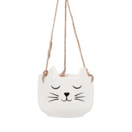 Hangpot kat