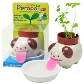 Zelfwaterende plantenpot hond