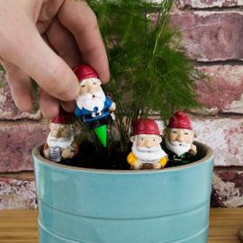 Mini garden gnomes
