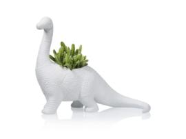 Dinosaurus plantenpot brachiosaurus