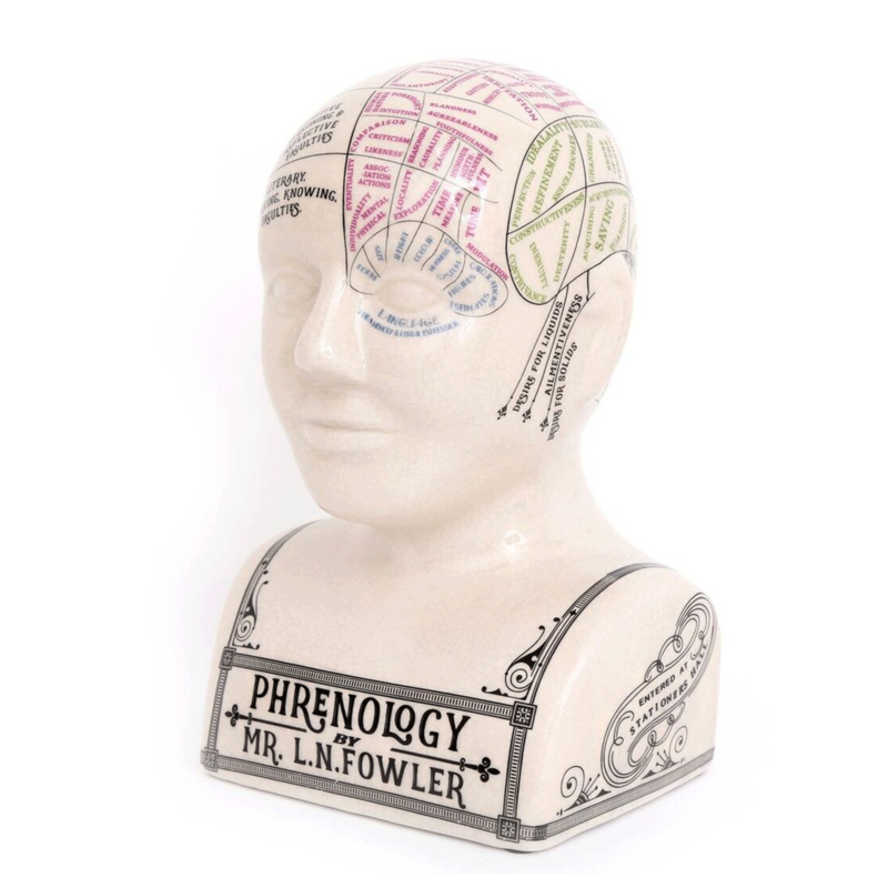 Phrenology head XL