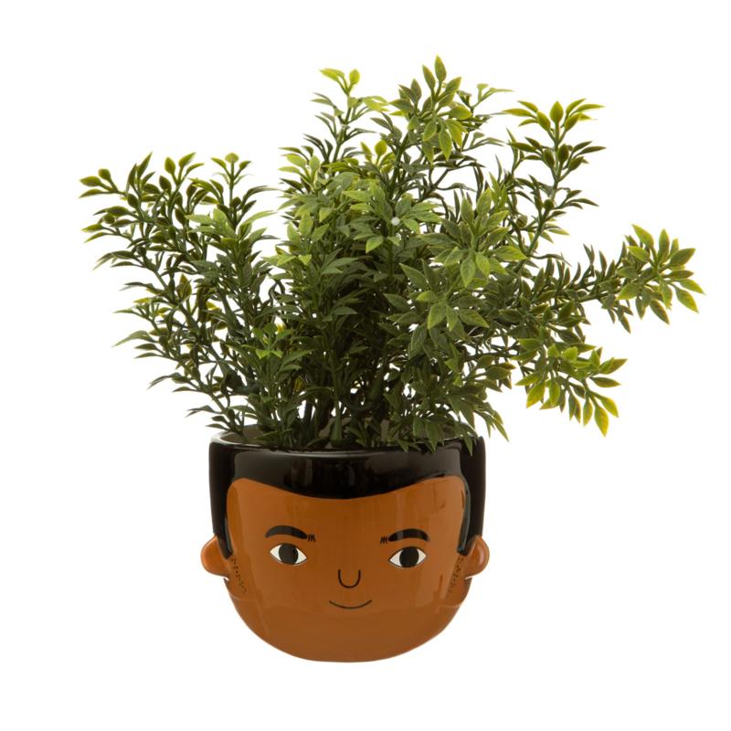My kind of people  mini planter Ezra