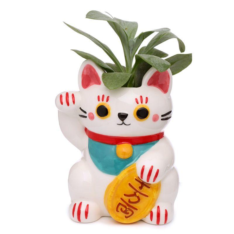 Lucky cat planten pot wit