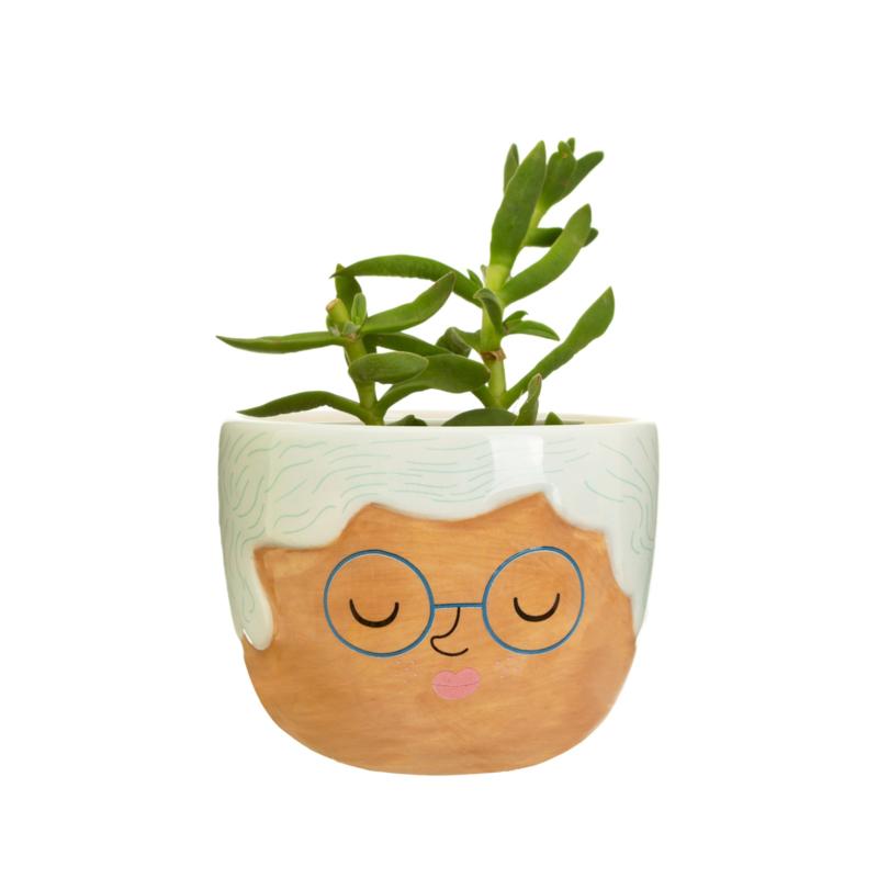 My kind of people  mini planter Rose