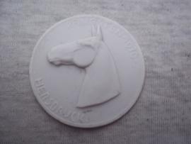 Penning porselein doorsnee 5 cm. PFINGSTEN 1936 HERSBRUCK - Reit und Fahr - Turnier der SA Reiter- Standarte 78. zeer bijzondere en zeldame stenen penning, waar er niet veel meer van over zijn.