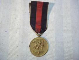 German anschluss 1-10-38 medal. Duitse 1 oktober 1938 medaille
