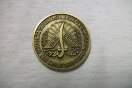 US coin 101 st airborne support group Saudi Arabia Iraq Air Assault, not named