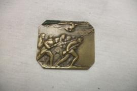 Austrian badge. Oostenrijkse penning met soldaten en adelaar, onbekend waarom hij is uitgegeven