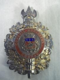French political badge CONSEIL MUNICIPAL COGNAC. Frans embleem gedragen door de plaatselijke gezagsdrager in de Cognac streek, gouveneur of regent.