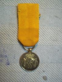 Nederlandse miniatuur medaille  Trouwe Dienst, met W gemerkt in het ringetje verguld of goud.