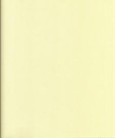 paneel 025 licht geel