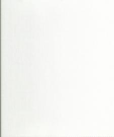 paneel 010 wit