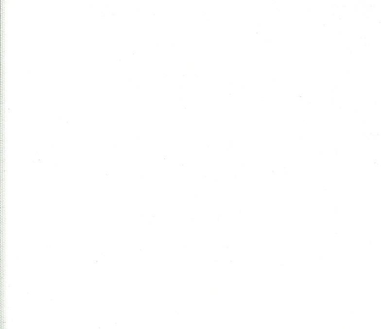 rolgordijn verduisterend 18501 wit