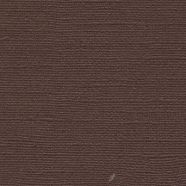 Brown Cardstock - Bazzill * BZ 5-943