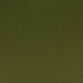 100% acryl vilt  - kakigroen 017 * 20x30 cm.