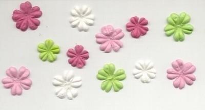 Primaflowers set 3
