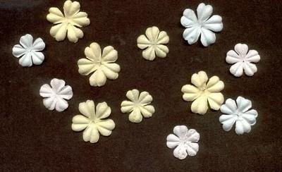 Primaflowers set 2