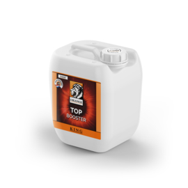 Orange Top Booster 1L