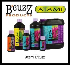 ATAMI B`cuzz