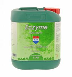Enzyme 5L