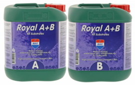 Royal A+B set 5L