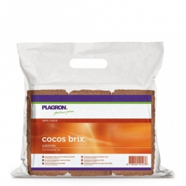 Plagron Cocos Brix doos 24 stuks