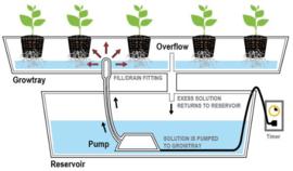 3 in 1 irrigatiesysteem Bonanza 0,35m2