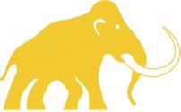 Mammoth pro  150 - 150x150x200