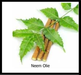 Neem Olie
