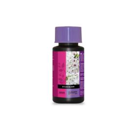ATAMI B'cuzZ Bloom Stimulator 100 ml