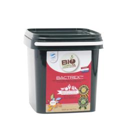 BioTabs Bactrex 1000 Gram