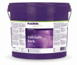 Plagron Universal Calcium Kick 5kg