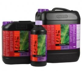 ATAMI B`cuzz Coco A&B 5 Liter