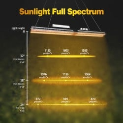 Mars Hydro SP 6500 600 Watt Full Spectrum LED lamp