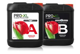 Pro XL Bloom A+B 5L