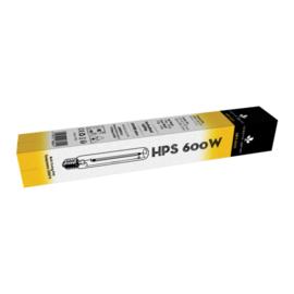 Daisy HPS Bulb HPS600W T46 E40 32250 Lumen