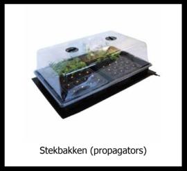 Stekbakken (Propagators)