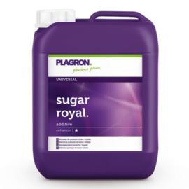 Plagron Universal Sugar Royal 5 liter
